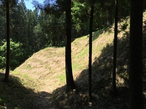 岩櫃城の堀