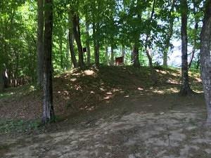 岩櫃城の本丸