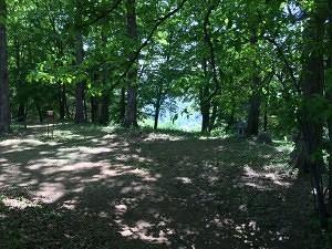 岩櫃城の本丸は「屋敷跡」とも言う