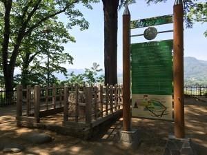 沼田城の平八石
