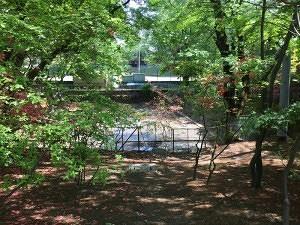 沼田城の本丸にあった堀のなごり