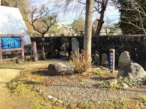 当信寺にある阿梅の方の墓