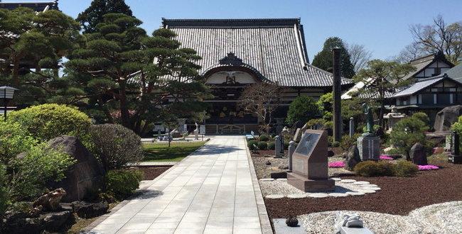 「小松姫の墓~芳泉寺に眠る小松姫」のアイキャッチ画像