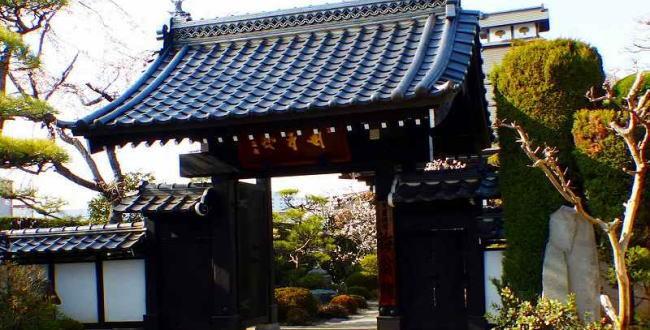 「右京の局とは~真田信之(真田信幸)の側室。」のアイキャッチ画像